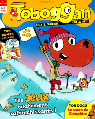 Subscription Toboggan